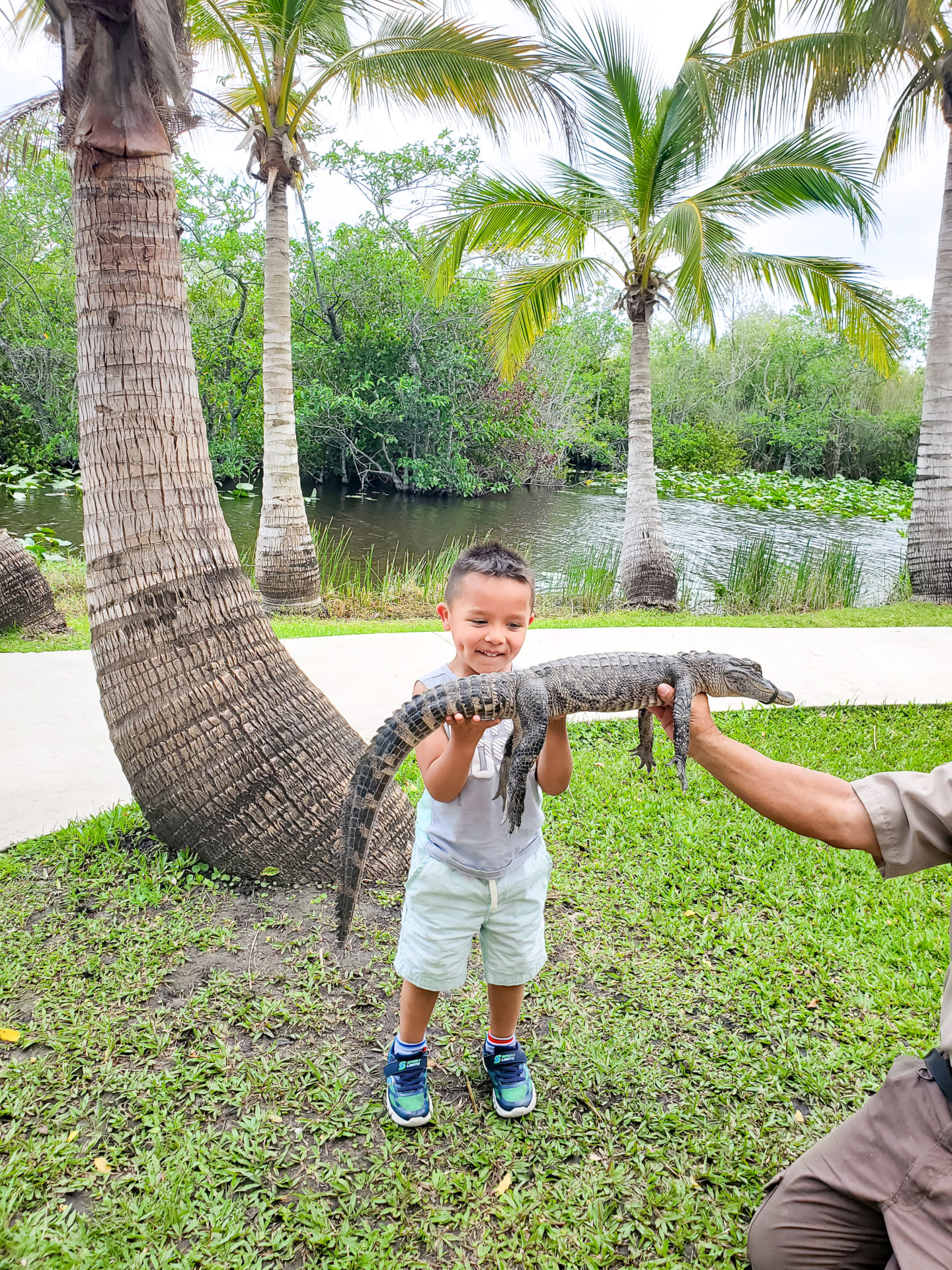Liam Holding a Baby Alligator.